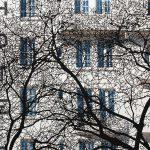 Hotel Ramage, Giclèe print, cm 100x150